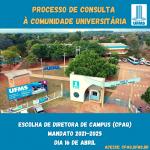 Processo de Consulta a comunidade Acadêmica